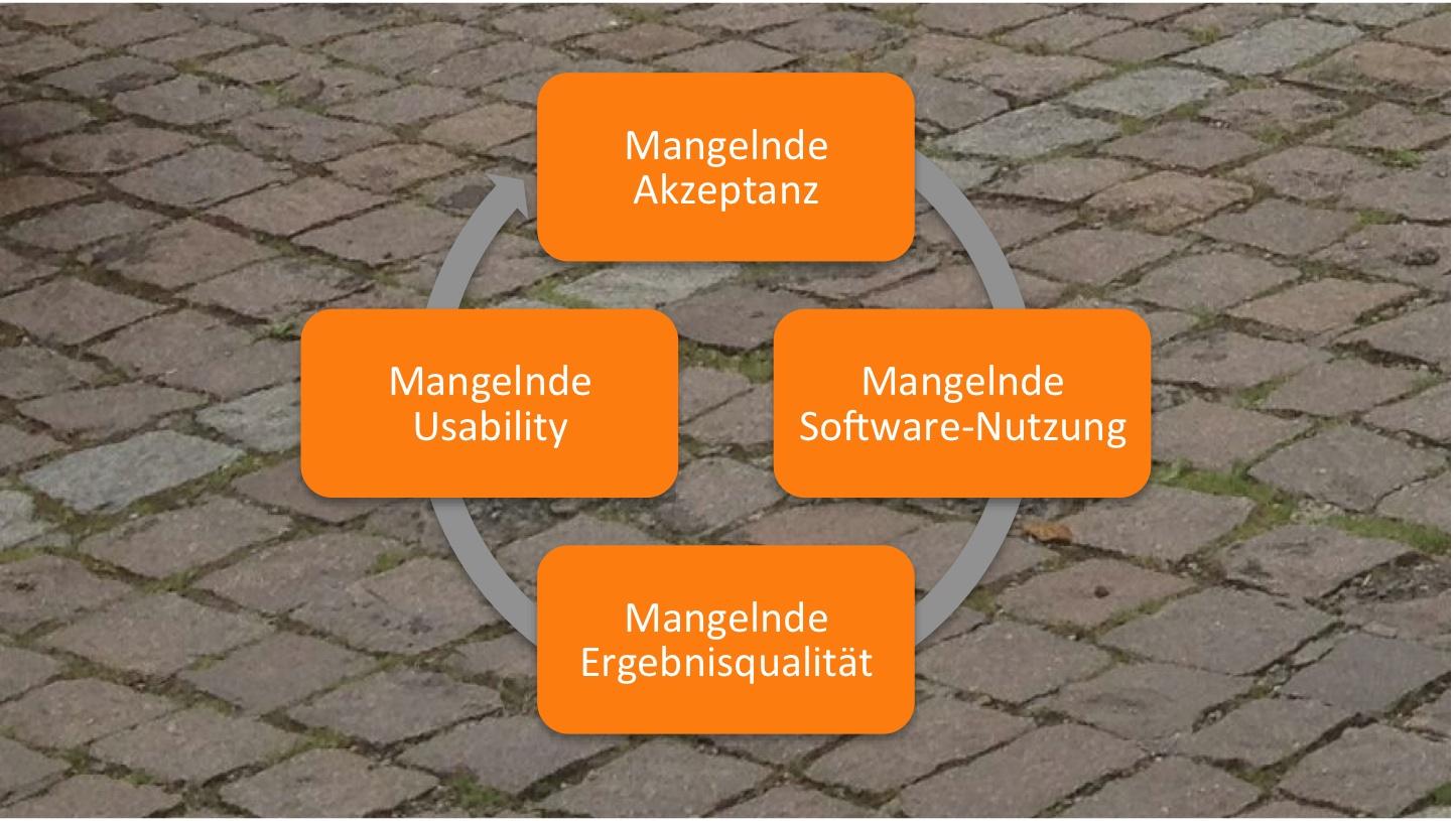 Stolpersteine in der Software-Einführung